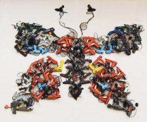 butterfly-362x300