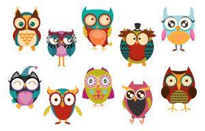 Owls Facebook